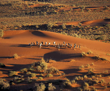 Kalahari_Desert00_High_Res_01_Hentie_Burger