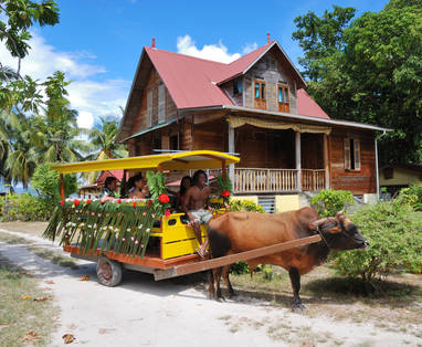 IMG4_Ox_Cart___Old_House_1_