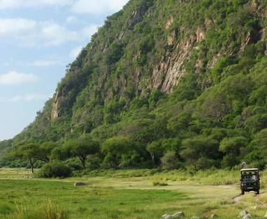 Game_drive_Lake_Manyara