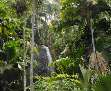 IMG12_Waterfall_Vallee_de_Mai