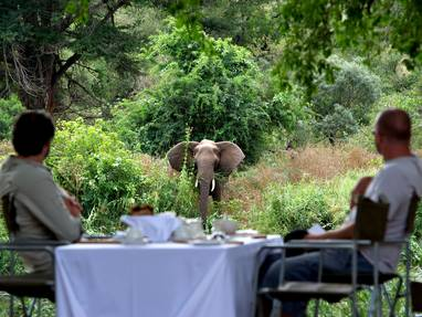 Singita lebombo lunch