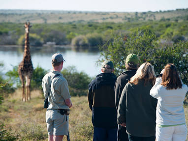 Kwandwe private walking safari